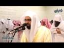 الشيخ ناصر القطامي ﴿ يقولون ربنا أتمم لنا نورنا﴾ ماتيسر من التحريم تراويح ليلة 28 رمضان 1439