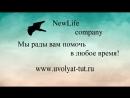 New Life Company