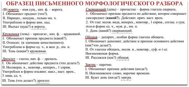 Схема морфологического разбора