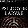 PSILOCYBE LARVAE в Phoenix Concert Hall