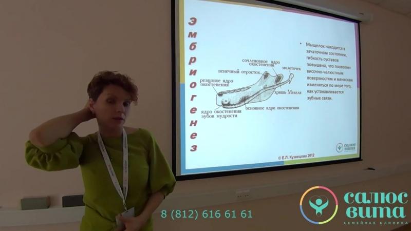 Лекция по теме «Тактика совместного ведения стоматологических пациентов остеопатами и ортодонтами»