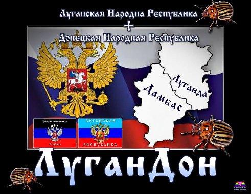 Местные выгнали террористов из сельсовета на Луганщине - Цензор.НЕТ 6689