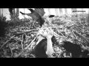 Tennis - Monocraft [Your Love Is Alright] (Kintar Remix)