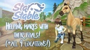 Helping mares with their foals all 4 locations Star Stable Updates