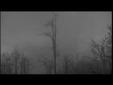 Vinterriket - Frostestrube,Lichtmond - SOUL AFFINITY,NebelKORONA - BAUMGESPENSTER
