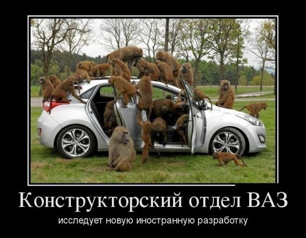 http://cs406730.userapi.com/v406730433/6af/IyuiHy8SH-g.jpg