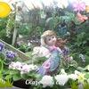 Сказочный сад (фиалки, цветы, овощи, экзотика)))