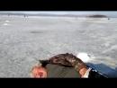 ★ Приколы на рыбалке! Пьяный рыбак спит на льду. Зимняя рыбалка.