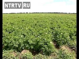 Фермер Владимир Аппаков собрал аграриев из почти всех районов Татарстана