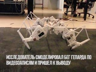 Механический гепард энергоэффективный робот будущего