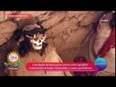 Casos sin respuesta las figuras de Nazca en Perú Sale el Sol