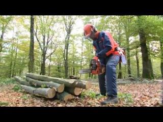 Так же Вам будут представлены методы валки деревьев малых и больших диаметров.  Ознакомится с ассортиметом бензопил...