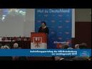 Birgit Bessin AfD bekommt nach dieser Rede stehenden Applaus 05 01 2019