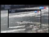 Житель Нижнекамска прыгнул в ледяное озеро, чтобы спасти собаку