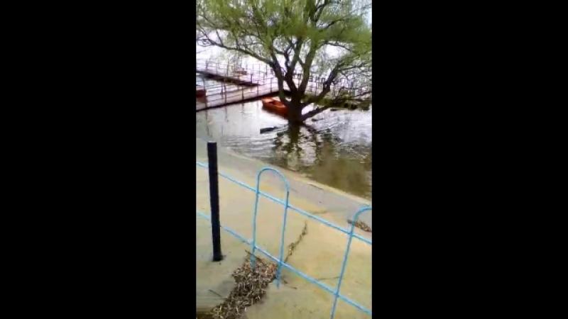Пришла большая апрельская вода 2018