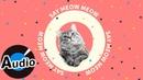 TikTok - CELINE Ft.Cloud Wang 王雲 - Say Meow Meow -《學貓叫》英文版(官方歌詞版)