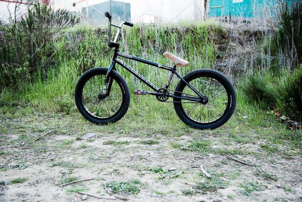 Hoang Tran bikecheck