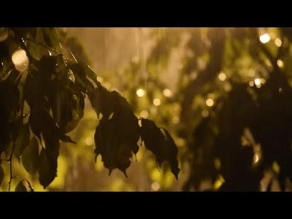 Michael E - Let It Rain *k~kat chill café* Vloppers Bride