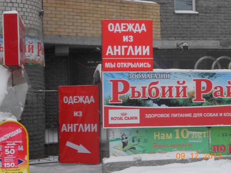 a620ea24026 Ирина Англичанка