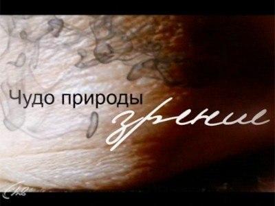 1 канал онлайн трансляция пресс конференции путина 18 декабря 2014