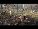 Уборка могилы Гарегина Нжде