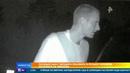 Полиция объявила в розыск человека, похожего на Эминема
