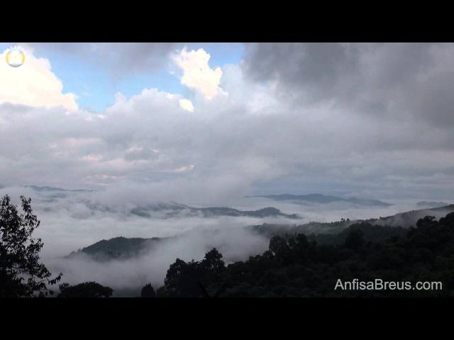 Вид на горы с Resort Baan Suan Doi Chaang ранним утром. Таиланд. 104.