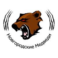 "Логотип Фрисби клуб ""Новгородские Медведи"""
