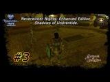 Прохождение [co-op] Neverwinter Nights: Enhanced Edition | Shadows of Undrentide | # 3