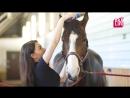 Верховая езда развлечение для аристократов