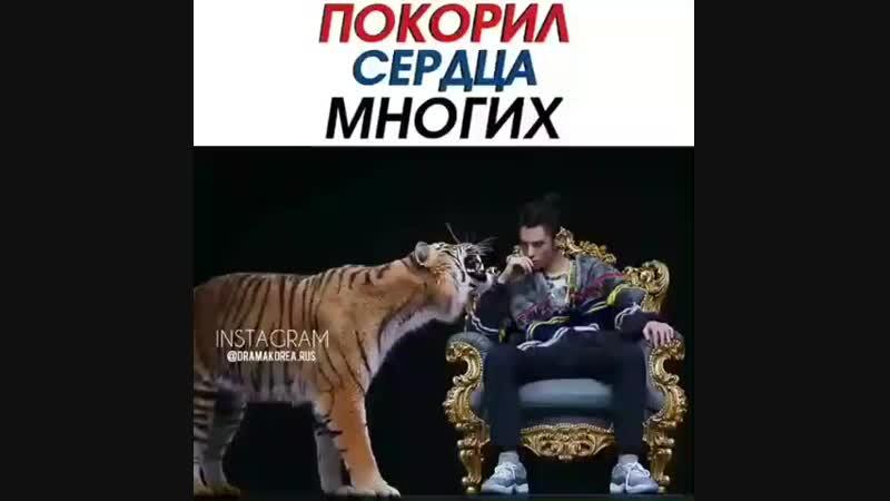 Dorama_stopBoohTQDl7u6.mp4
