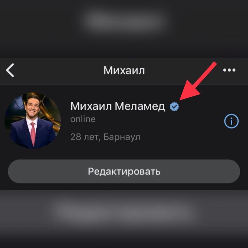 Михаил Меламед   Барнаул