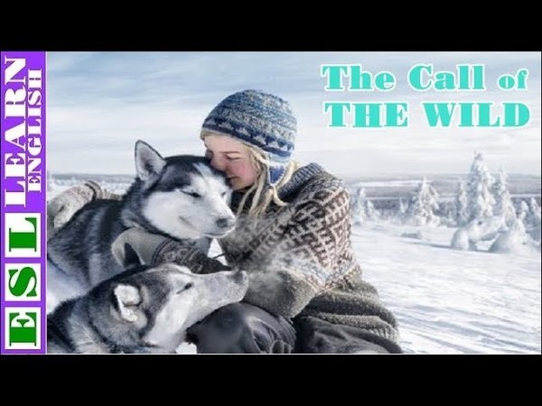 Learn English Through Story ★ Subtitles ✦ The Call of The Wild by Jack London