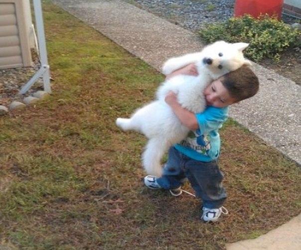 25 доказательств, что детям необходимы домашние животные: ↪ «Сын притащил соседского щенка со словами, что теперь они друзья».