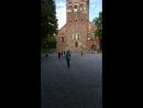 Колокольный звон Турку Финляндия