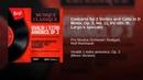 Concerto for 2 Violins and Cello in D Minor, Op. 3, No. 11, RV 565: III. Largo e spiccato