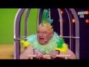 Шкура, алкаш, барыга - Муж научил попугая разговаривать. Новый Вечерний Квартал 2018!!!