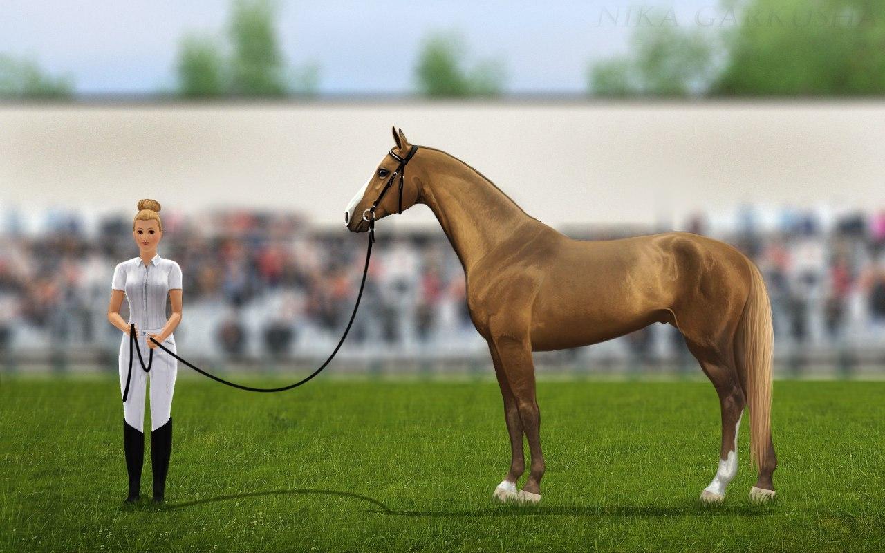 Регистрация лошадей в RHF 1.1 - Страница 38 V7Tx_e2I18Y