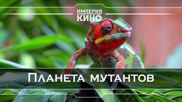 Планета мутантов (2010)