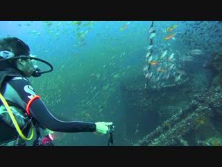 Chang Wreck at Koh Chang Island   Diving Thailand