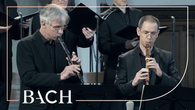 Bach Cantata Gottes Zeit Actus Tragicus BWV 106 Van Veldhoven Netherlands Bach Society