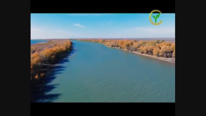 Ешлар телеканалында Динара Нуратдинова