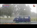 Молния расколола березу в Горецком районе БЕЛАРУСЬ 4 Могилев