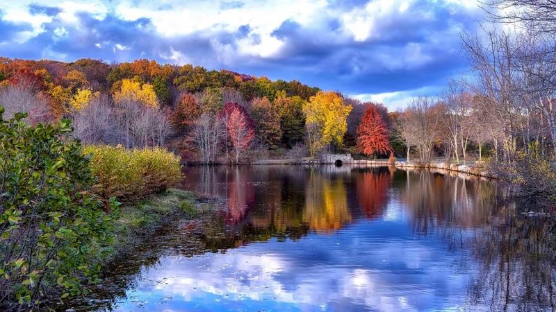 Картинка природа. Парк Твин Брукс в Трамбалле, осень, США, Коннектикут.