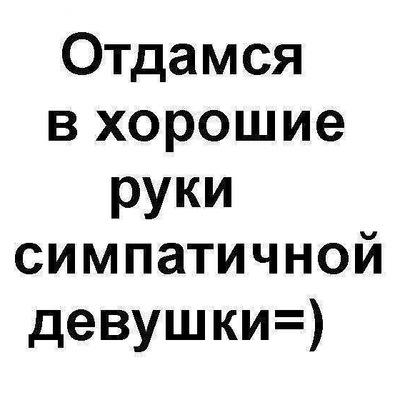Илья Макаров, 23 февраля , Черусти, id60818556