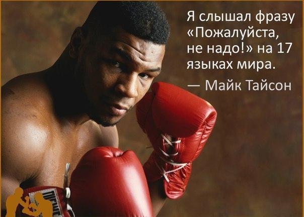 Цветами картинки, картинки о боксе с цитатами