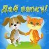 =Дай Лапку= Помощь бездомным животным