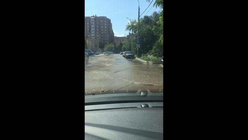 Потоп на никитинской