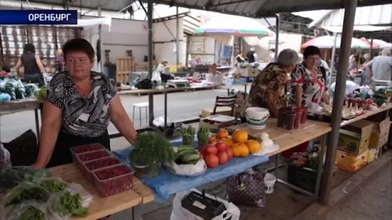 Администрация Оренбурга выделила свыше 1500 мест для торговли товарами с дачи