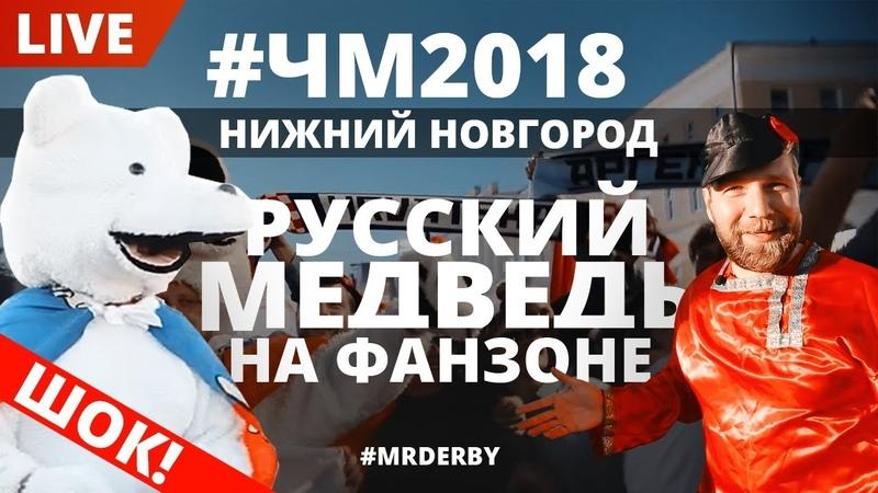 Нижний Новгород. Живой медведь на фан-зоне ЧМ-2018.